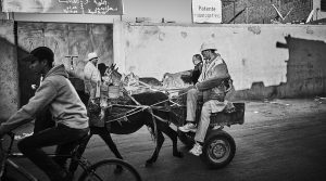 Medina of Essaouira with a donkey