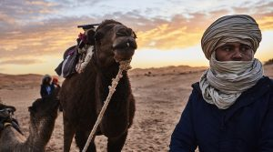 berber and his camel looking into the distance